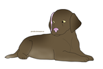 Chocolate Lab Puppy by Pitweiler