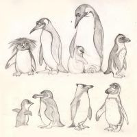Penguins by japa2