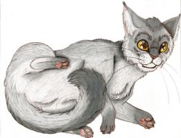 Greystripe for Ze WCC Collab:D by Satyrtail