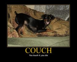 Couch demotivational by Shippuden23