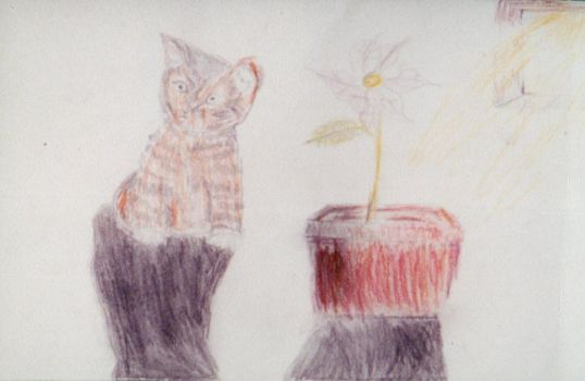 Cat and Plant by alittlebitstronger