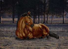A Well Deserved Rest by BeauArrow