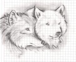 Couple Wolf by Sihuk