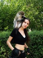 Lara Croft - Hey, monkey by TanyaCroft