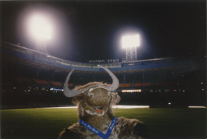 The Yak at Tiger Stadium by WingDiamond