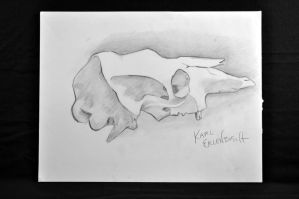 skull by erbusch