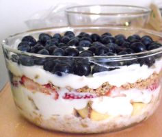 Fruit Trifle by Sumbdumbkid