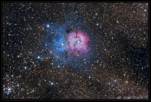 Trifid Nebula Mk II by CapturingTheNight