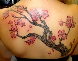 Cherry Blossom Branch - Back by SuperSibataru