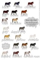 Horse Color Chart by thevirtualgaucho