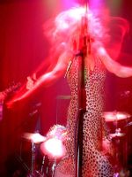 Sonic Youth 5 by angieness