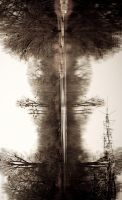 Rorschach Test I by BloodType0