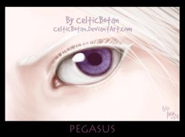 Pegasus by CelticBotan