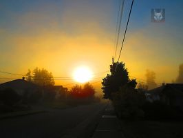 The Golden Fog by wolfwings1