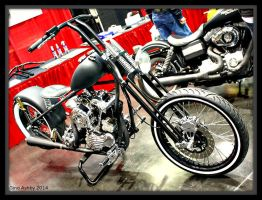EBS 142 by StallionDesigns