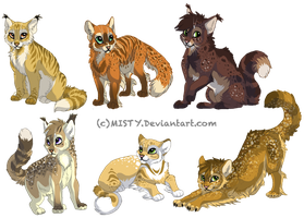 DustspotXCrookedpath hypo kittens by DancingfoxesLF