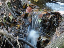 A Natural Florida Waterfall by Eco-Cate