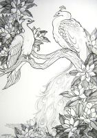 White Peafowl and Magnolia Blossoms by HouseofChabrier