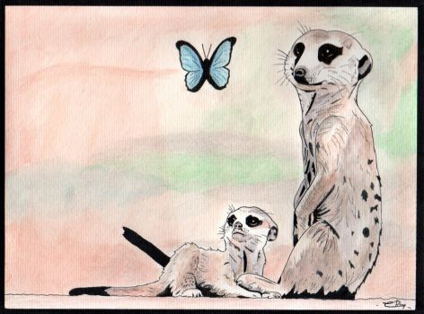 77. Meerkat (Look at the butterfly) by Cooki3Art