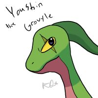 Youshin the Grovyle by KaidaTheDragon