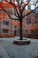 Yale University Stock 21 by FairieGoodMother