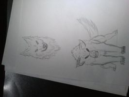 Wolves by Pbjpwned