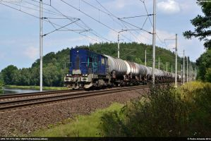 UPD 741-515 NEx159570 Tynec nad Labem 08-08-14 by Comboio-Bolt