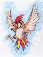 17 - Pidgeotto by JacobMace