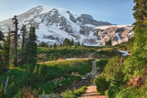 Going to Mount Rainier by arnaudperret