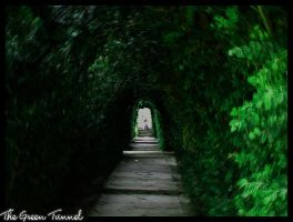 The Green Tunnel by PhilBG