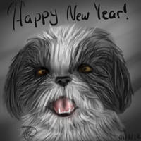 shih tzu by NeonDefined
