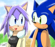 Sonic and Rina in Sonic X by EvilMel