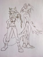 Volly and the Hawk by SonicGurl82