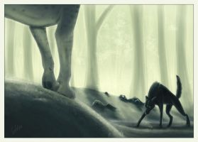 This is my forest by blackseagull
