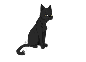 .:Ravenpaw:. by RooksRookery