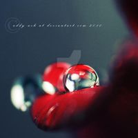 Red drop. ... by addy-ack