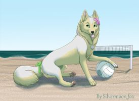 Summer Time by silvermoonfox