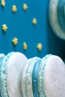 Prickly Pear Macarons 2.1 by bittykate