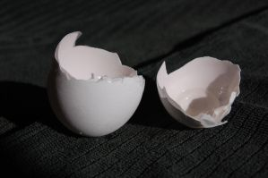 Stock 207 - Egg Shell by pink-stock