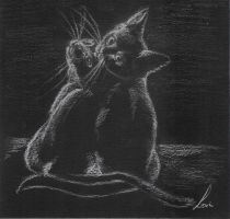 Cats in love by Tanathiel