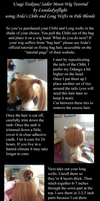 Usagi Wig Tutorial by Lunaladyoflight by lunaladyoflight