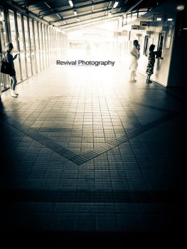 Breaking Light by Revival-Photography
