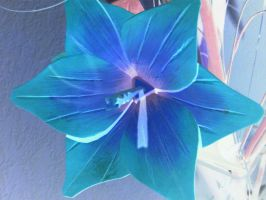 Blue flower by Nicothelord