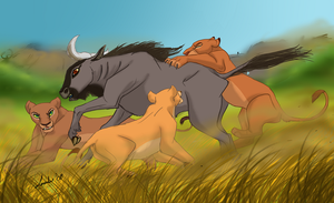 Lioness Hunt by Moolallingtons