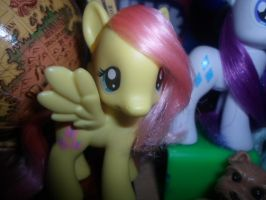 FlutterShutter by MidnightRarity