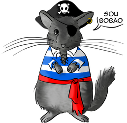 Eibl: the broken tail pirate chinchilla. by mushisan