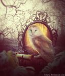 Owl by S-Lana