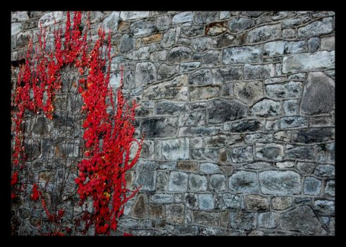 Eastern State Penitentiary 2 by Luthienmisery29