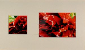 Pivoine rouge diptyque by Martine-m-richard