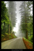 The Lonely Road by nevermoregraphix